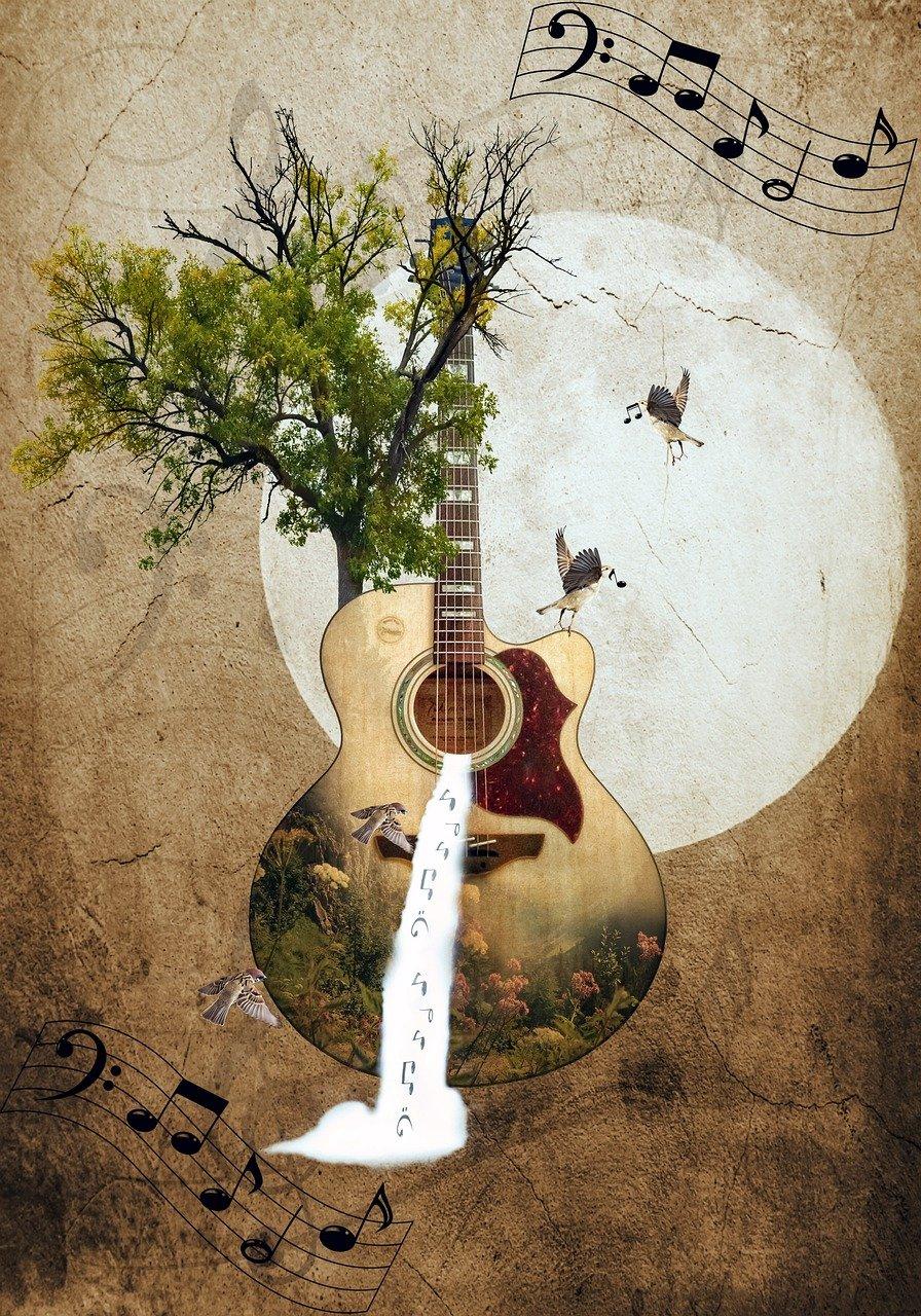 kitara, puita ja vesiputous, nuotteja viivastolla, lintuja